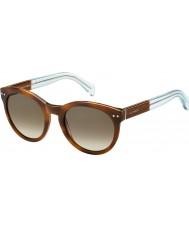 Tommy Hilfiger Damer th 1291-ns m9g J6 Havana bruna azurblå solglasögon