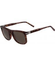 Calvin Klein Collection Mens ck3198s blonda havana solglasögon