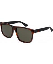 Gucci Mens gg0010s 006 solglasögon