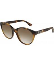 Gucci Ladies gg0419s 003 54 solglasögon