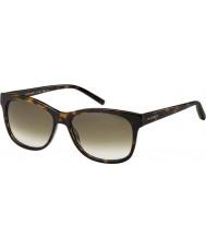 Tommy Hilfiger Th 1985 086 db sköldpaddsskal solglasögon