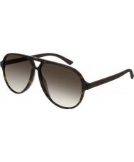 Gucci Mens gg0423s 009 60 solglasögon