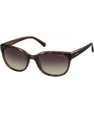 Polaroid Ladies pld4030-s Q3V la Dark Havana polariserade solglasögon