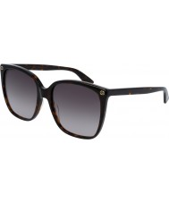 Gucci Ladies gg0022s 003 solglasögon