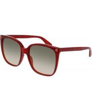 Gucci Ladies gg0022s 006 solglasögon