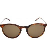 Polo Ralph Lauren Ph4096 50 klassiska känsla jerry Tortoiseshell 501773 solglasögon