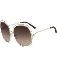 Chloe Damer ce126s steg guld och bruna solglasögon