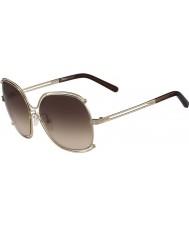 Chloe Damer ce129s steg guld och transperent bruna solglasögon