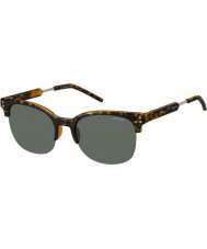 Polaroid Mens pld2031-s nho rc Havanna guld polariserade solglasögon