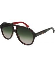 Gucci Mens gg0159s 004 56 solglasögon