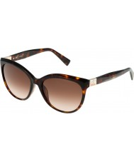 Furla Damer Zizi su4896s-743 blanka bruna Havana-gula solglasögon