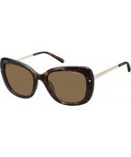 Polaroid Ladies pld4044-s nho ig Havanna guld polariserade solglasögon