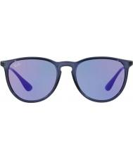 RayBan Erika rb4171 54 6338d1 solglasögon