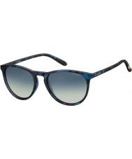 Polaroid Pld6003-n sek Z7 Havanna blå polariserade solglasögon