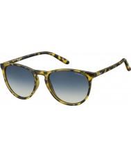 Polaroid Pld6003-n slg pw Havanna gula polariserade solglasögon