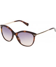 Furla Ladies stella su4961-04ap gula Havana-mörkbrun solglasögon