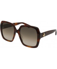 Gucci Ladies gg0096s 002 solglasögon