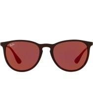 RayBan Erika rb4171 54 6339d0 solglasögon