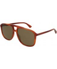 Gucci Mens gg0262s 002 58 solglasögon