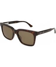 Gucci Mens gg0267s 002 53 solglasögon