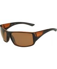 Bolle Tigerorm glänsande svart matt brun polariserad sandsten pistol solglasögon
