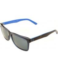 Polo Ralph Lauren Ph4098 57 avslappnade levande genomskinliga blå 556387 solglasögon