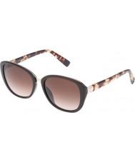 Furla Damer college su4905r-0d84 glänsande fullständiga bruna solglasögon