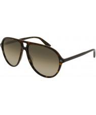 Gucci Mens gg0119s 002 solglasögon