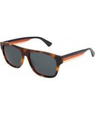 Gucci Mens gg0341s 004 56 solglasögon