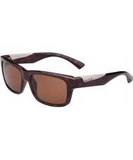 Bolle Jude glänsande sköldpaddsskal polariserad a-14 solglasögon