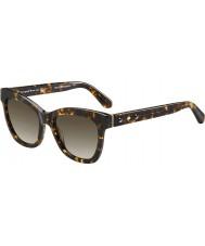 Kate Spade New York Damer krissy-s Z61 ha havana solglasögon