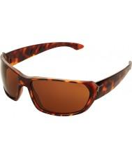 Cebe Trekker glänsande sköldpaddsskal 1500 bruna solglasögon