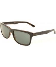 Polo Ralph Lauren Ph4098 57 casual vardagsrum topp svart på jerry sköldpadda 526087 solglasögon