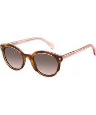Tommy Hilfiger Damer th 1437-s lq8 3x rosa havana solglasögon