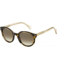 Tommy Hilfiger Damer th 1437-s KY1 J6 gula havana beige solglasögon