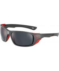 Cebe Cbjol7 jorasses l grå solglasögon